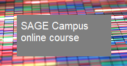 SAGE Campus online course