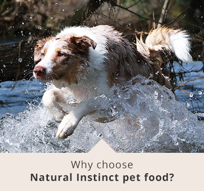 Why Choose Natural Instinct Food